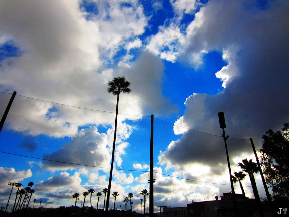 LA_in_the_rain