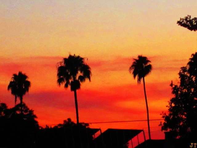 sunset_8-4
